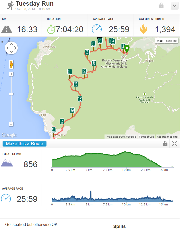 Running Activity 16.33 km  RunKeeper - Google Chrome_2013-11-18_13-27-57