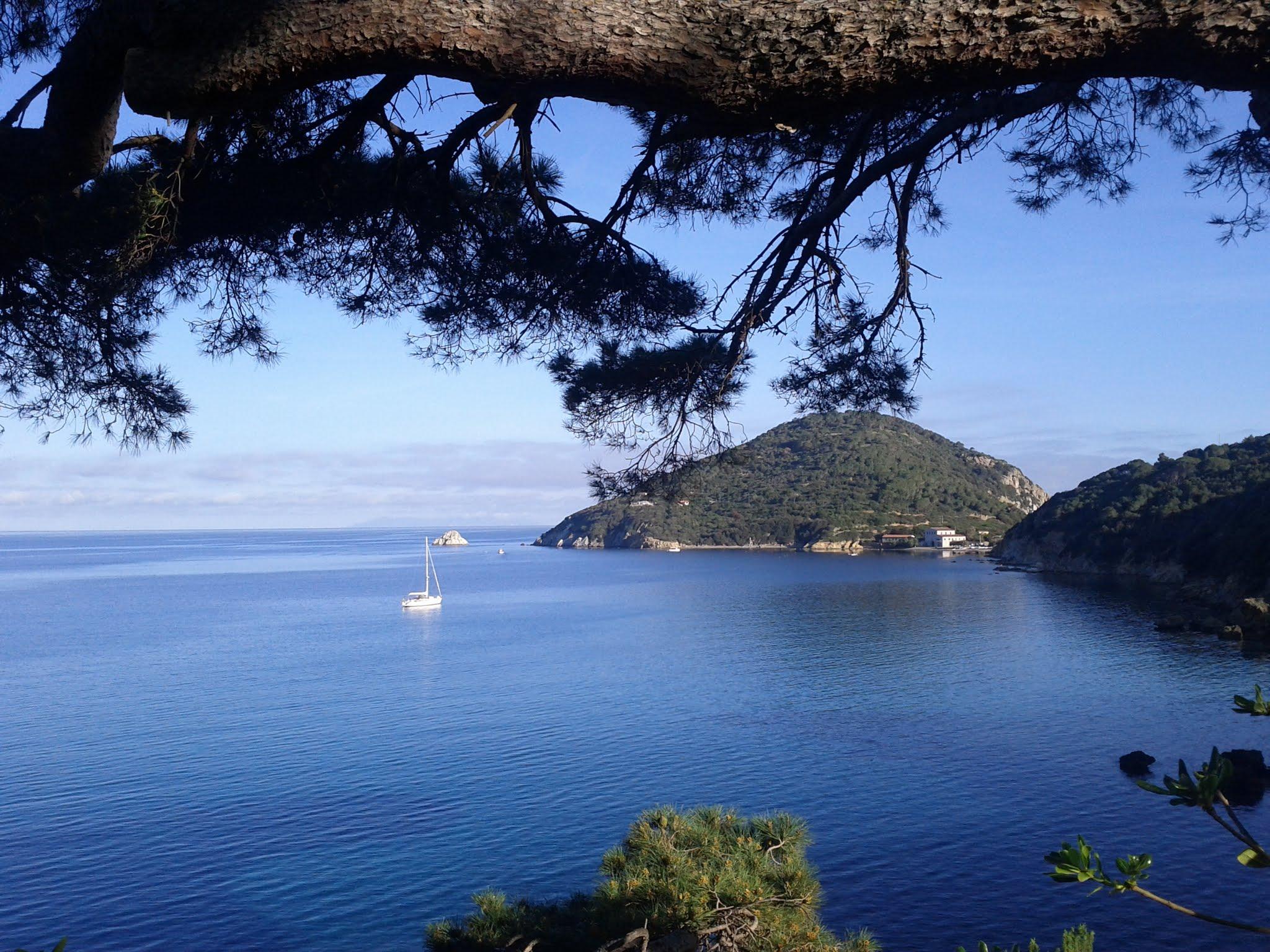 Enfola peninsula from Hotel Viticcio