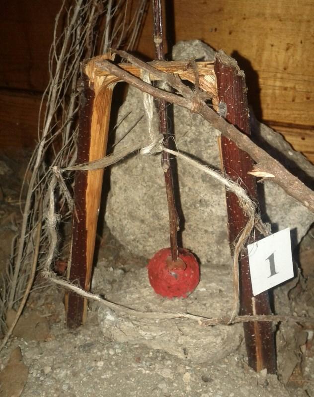 Bird trap in Il Casalino del Castagno